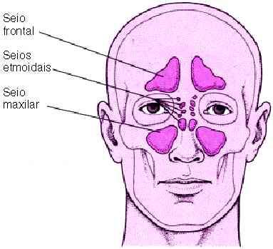 Cura e Sintomi della Sinusite